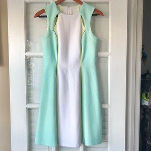 Catherine Malandrino seafoam green and white dress
